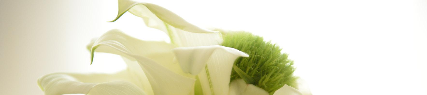 Blumenkunst - Blumenladen Ergolding